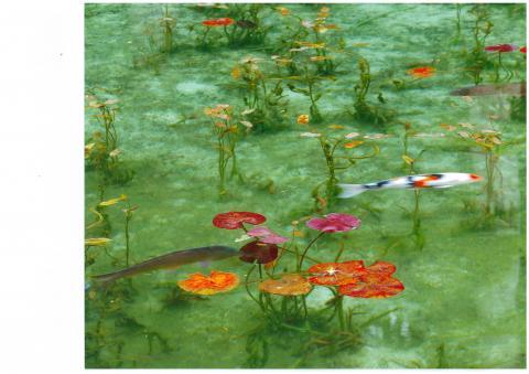 根道神社 通称モネの池