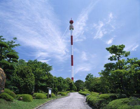 写真:宇和海展望タワー